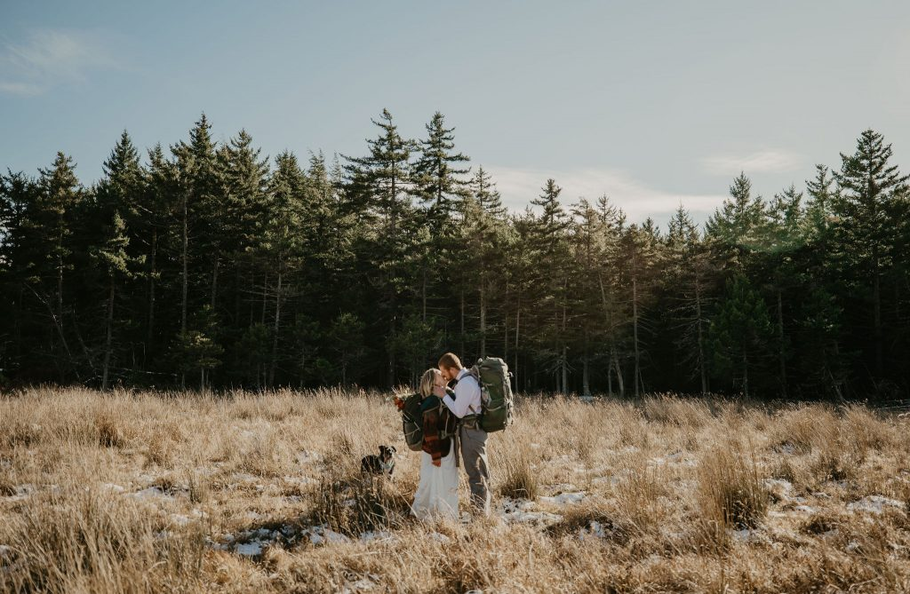 a bride and groom standing in a meadow are kissing with a green evergreen silhouette in the background and blue skies