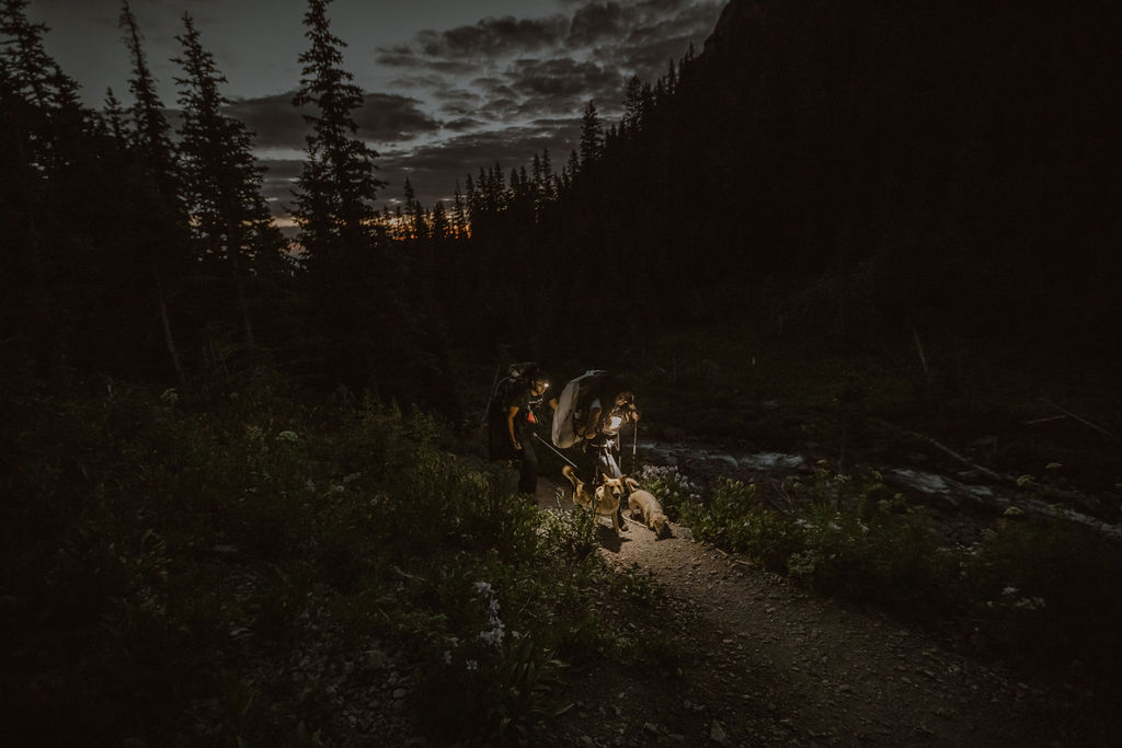 a couple hiking in the mountains with their two dogs at night wearing head lamps