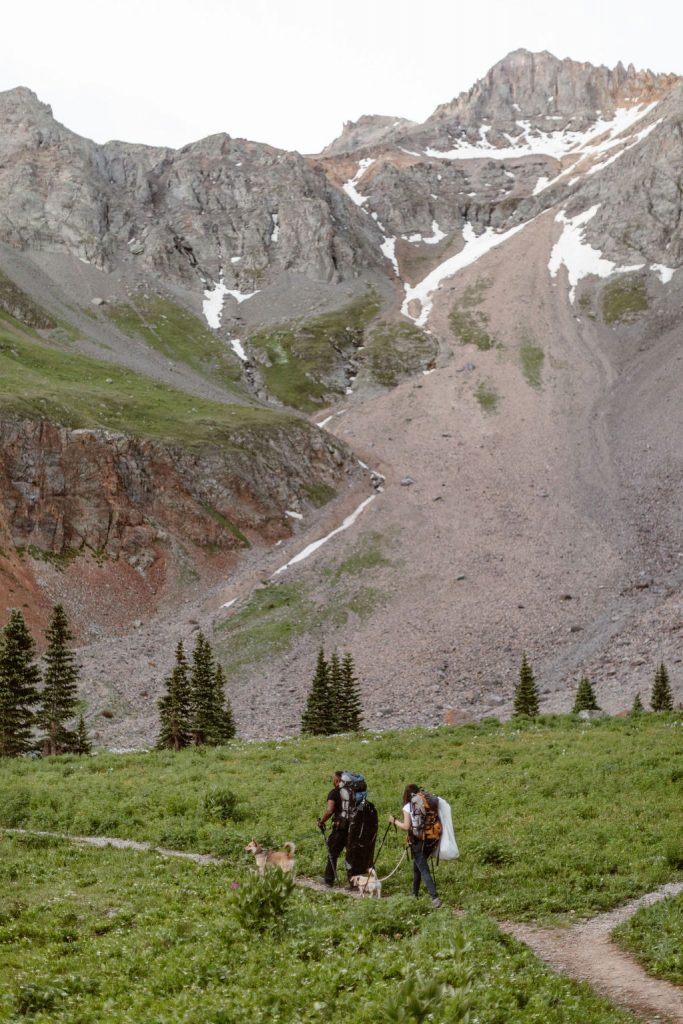 a couple with their two dogs hiking with trekking poles and hiking backpacks are hiking towards a tall snow covered mountain in the san juan mountains