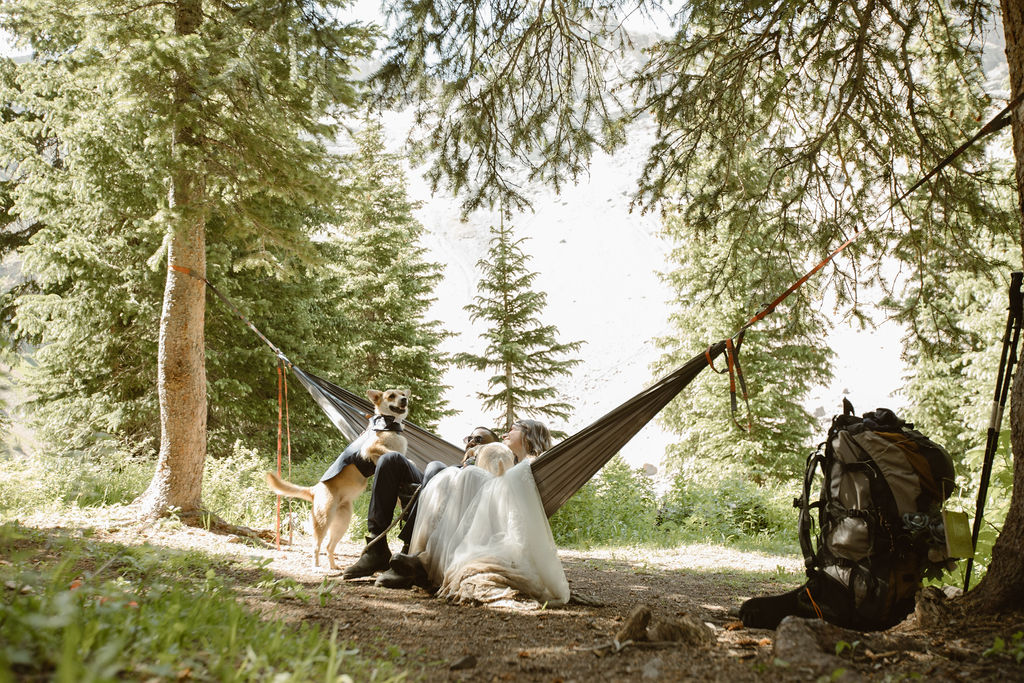 a bride and groom wearing wedding attire are sitting in a hammock in an evergreen forest while their dog is trying to jump into the hammock with them