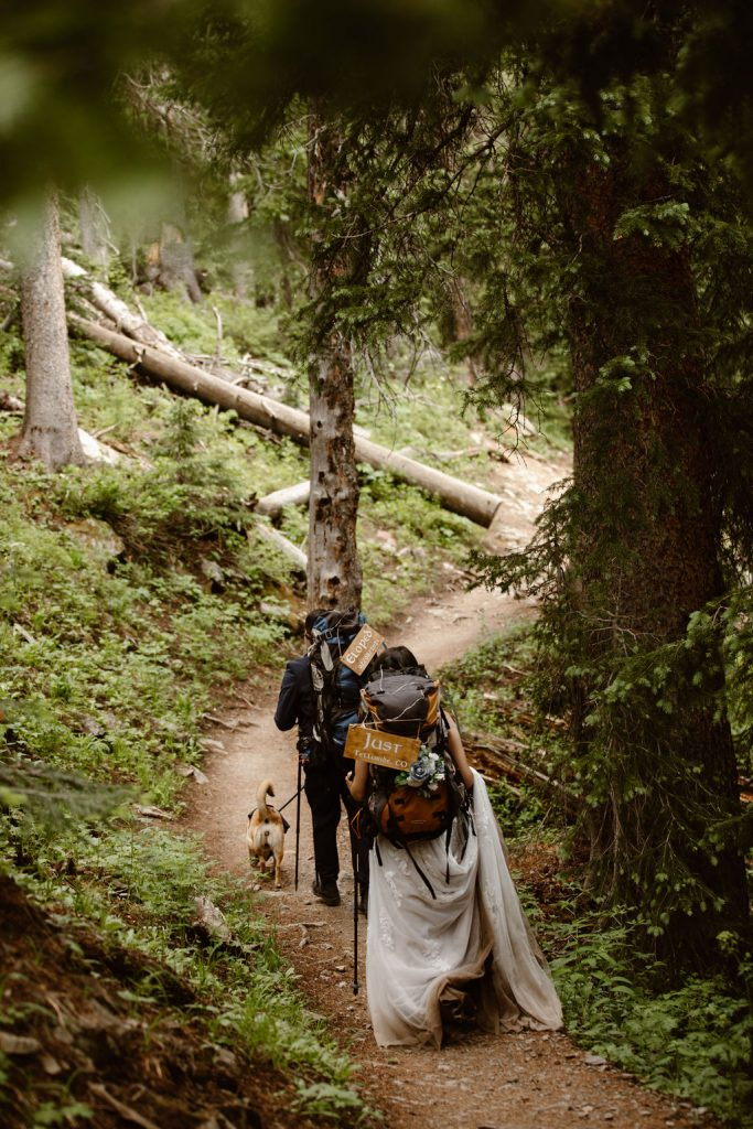 a photo of a bride and groom hiking on their wedding day in full wedding attire