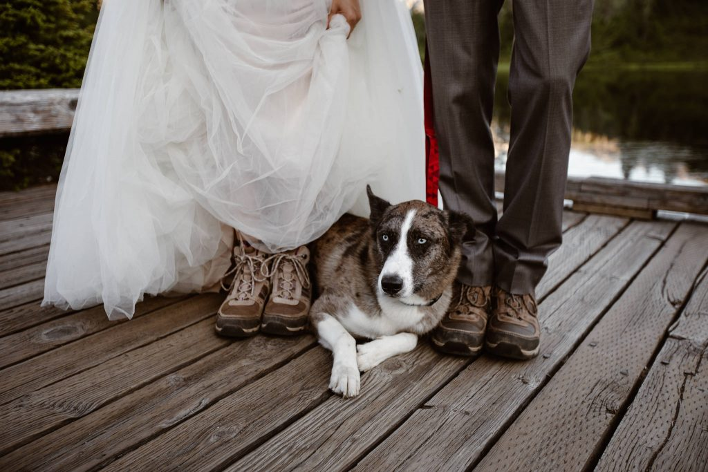 a grey brindle dog sitting on a dock in between his humans feet