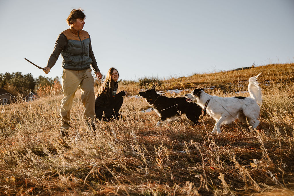 a couple playing fetch with their dogs in a field of tall grass