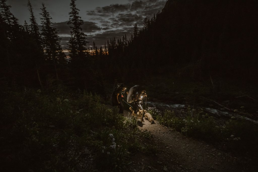 a couple hiking at night with their dogs
